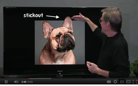 The Rapid E-Learning Blog - the stickout cropping technique
