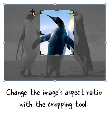Articulate Rapid E-Learning Blog - use the cropping tool to create teh right aspect ratio in PowerPoint or Storyline